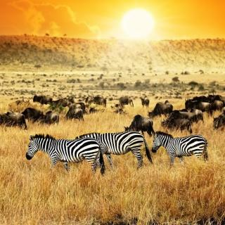Kenia Visum
